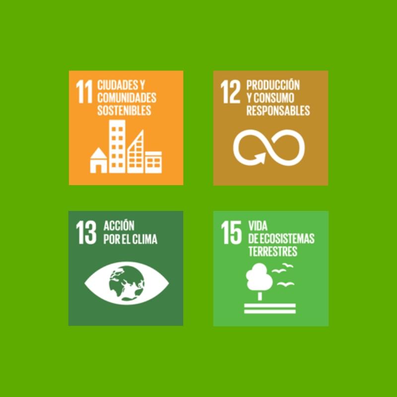 Objetivos de desarrollo sostenible y conciencia social